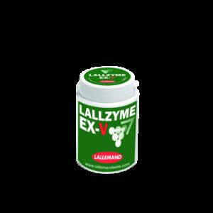 enzim exv